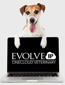 Evolve IP OneCloud Veterinary White Paper